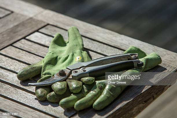 secateurs & gardening gloves - pruning shears stock photos and pictures