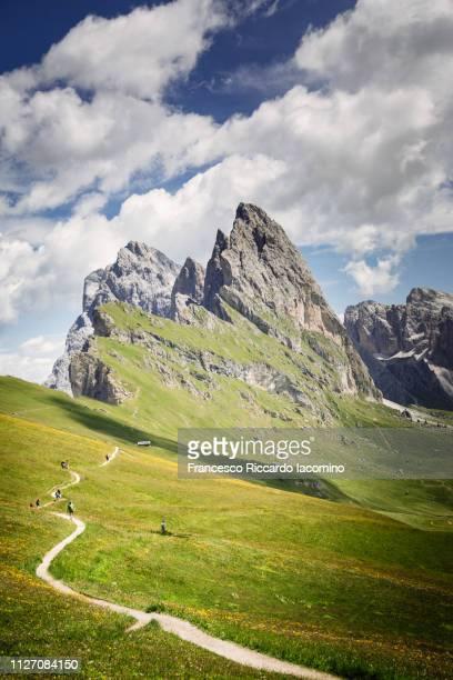seceda mountain peak with path and green field - iacomino italy foto e immagini stock