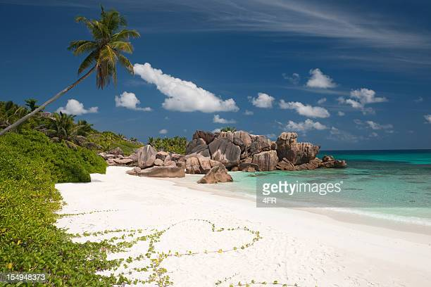 secluded beach in paradise - flower heart - la digue island stock pictures, royalty-free photos & images