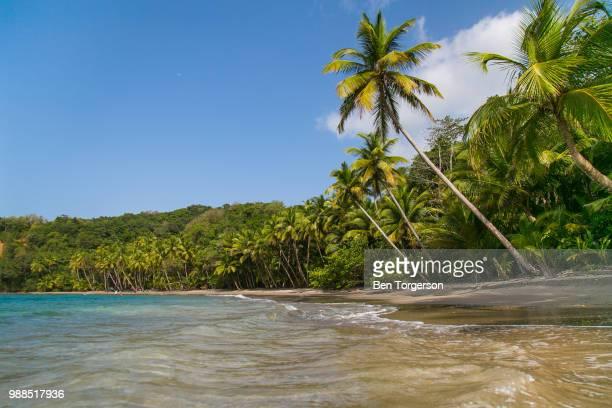 secluded beach - dominica fotografías e imágenes de stock
