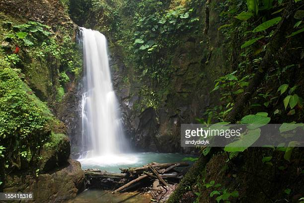 Secluded Tropical Waterfall