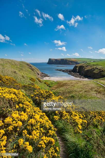 secluded, undiscovered, cullykhan beach, sea cliffs, looking to  pennan.  aberdeenshire, scotland. - aberdeenshire stock pictures, royalty-free photos & images