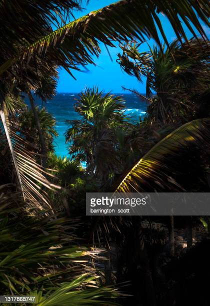 seclusion beach - hawaii inselgruppe stock-fotos und bilder