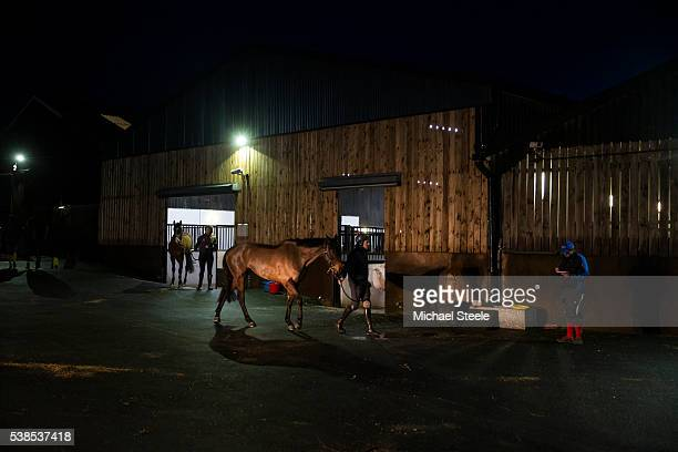 Second Assistant Chris Davies reads notes ahead of first lot at Sandhill Racing Stables on January 5 2016 in Minehead England Sandhill Racing Stables...