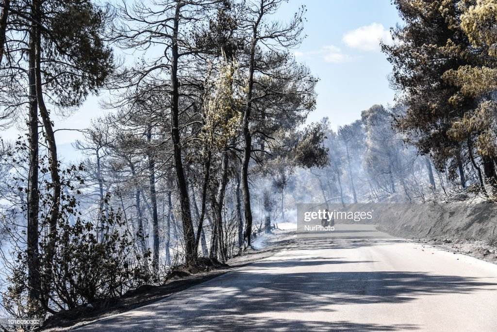 Massive Wildfire On Island Euboea, Greece