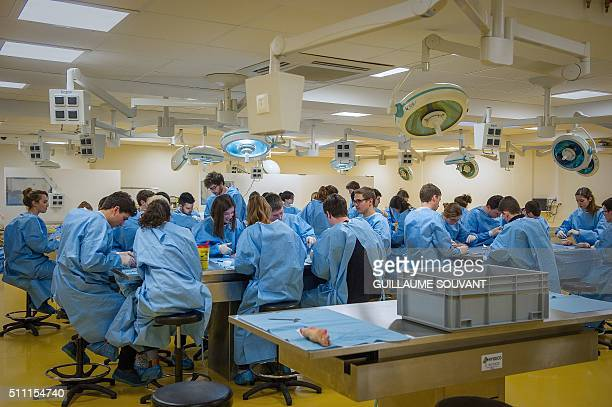 Second year medical students practice techniques on animal body parts at the Pharmacy and Medicine Faculty at the University of Poitiers on February...