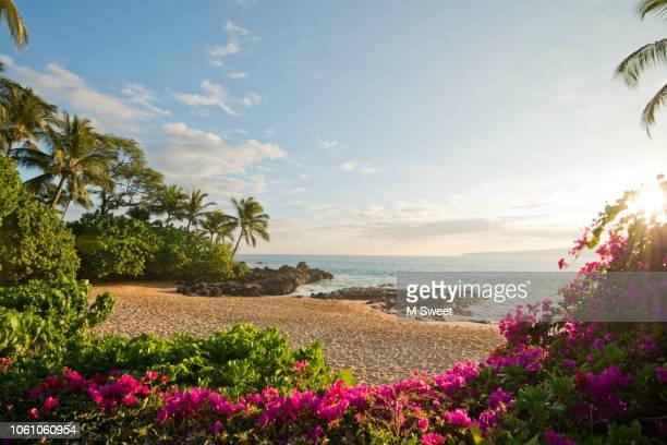 secret beach hawaii - hawai fotografías e imágenes de stock