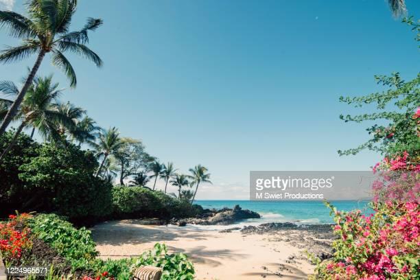 secret beach - hawai fotografías e imágenes de stock