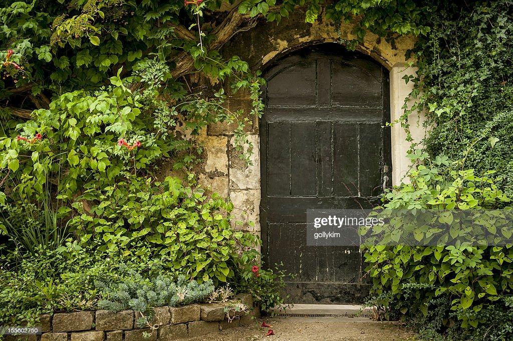 Secret Garden Door : Stock Photo