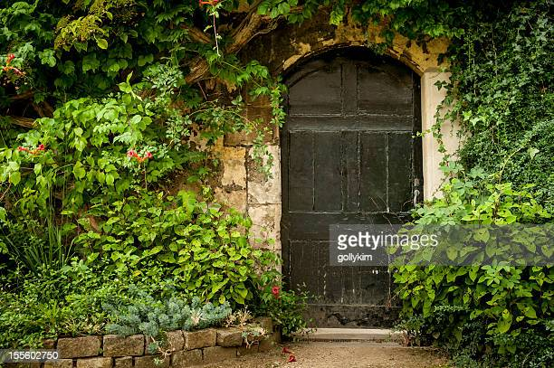 secret garden door - mystery stock pictures, royalty-free photos & images