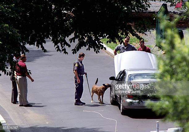 Secret Service Officers and a bomb sniffing dog look over a car that was suspected in carrying a bomb which was parked in the driveway close to the...