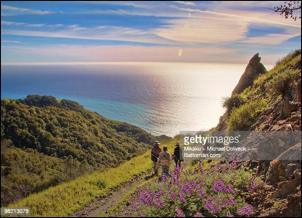 secret spot ragged point hike - big sur stock photos and pictures