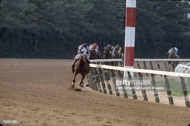 Secretariat wins the Belmont Stakes with Ron Turcotte aboard on June 9 l973 at Belmont Park in Elmont New York