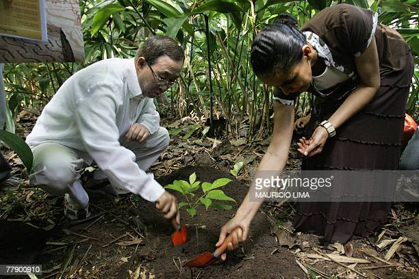 UN Secretary General Ban KiMoon and Brazil's Environmental Minister Marina Silva plant a tree as they tour the Emilio Goeldi museum's zoobotanical...