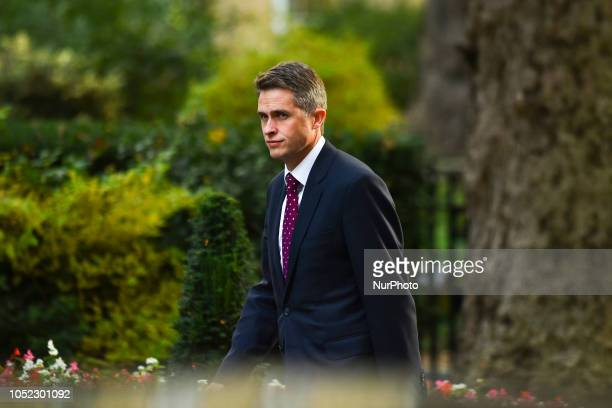 Secretary of State for Defence Gavin Williamson arrives for a weekly meeting of cabinet ministers at number 10 Downing Street in London on October 16...