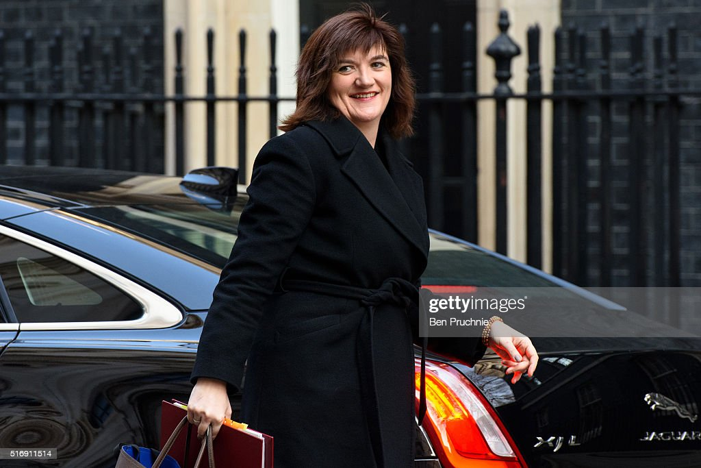 David Cameron Chairs Weekly Government Cabinet Meeting : News Photo