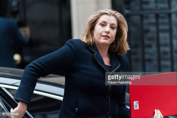 Secretary of State for International Development Penny Mordaunt arrives for a weekly cabinet meeting at 10 Downing Street in central London June 12...