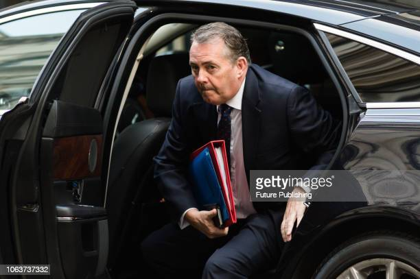 Secretary of State for International Trade and President of the Board of Trade Liam Fox arrives for a Cabinet meeting at 10 Downing Street in central...
