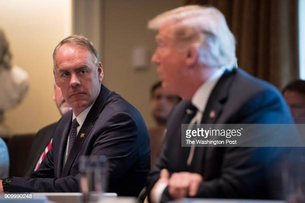 Secretary of the Interior Ryan Zinke listens as President Donald Trump speaks during a cabinet meeting in the Cabinet Room of the White House in...