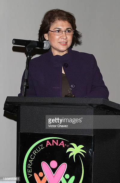 Secretary turism Veracruz Leticia Perlasca attends 'Antigua Veracruz Lugar De Raices Profundas' book launch at the Omiya restaurant on December 14...