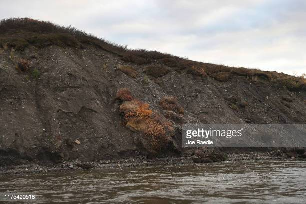 Section of an embankment is seen where due to permafrost melt the dirt wall collapsed on September 17, 2019 near Kivalina, Alaska. Permafrost which...