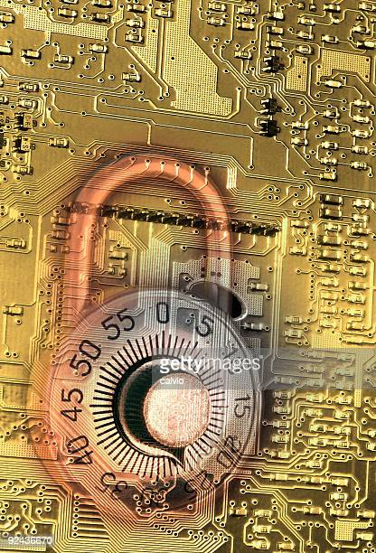 secure circuit gold - fraud protection stock pictures, royalty-free photos & images