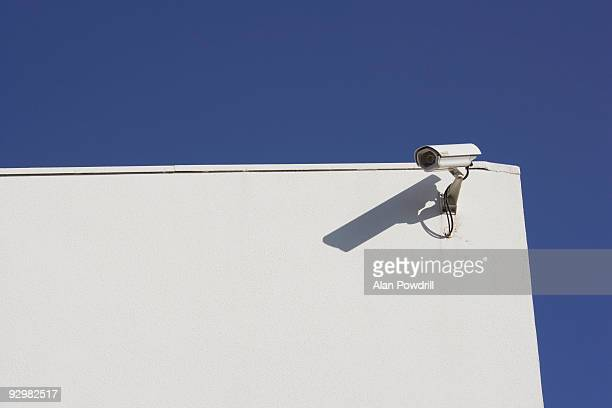 Security Camera Landscape