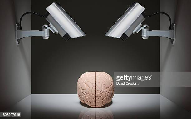 Security Cameras watching a human brain