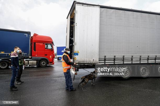 Security dog barks as he detects migrants hidden under a lorry headed to Ireland, at the port of Cherbourg, northwestern France, on February 2, 2021.