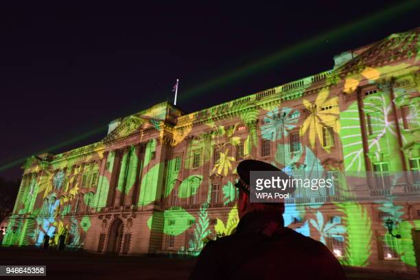 Security look on as a rainforest design is projected onto the facade of Buckingham Palace to celebrate Her Majesty Queen Elizabeth II's global...