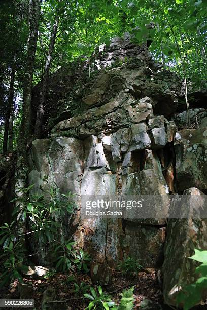 sedimentary rock formations in the forest - monongahela national forest stock photos and pictures