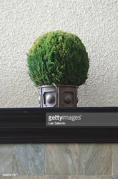 i see faces - pareidolia stock pictures, royalty-free photos & images