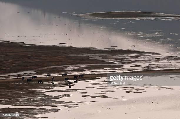See in der Umgebung von Zhongdian