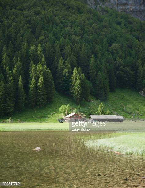 seealpsee in appenzell - lauryn ishak stock pictures, royalty-free photos & images