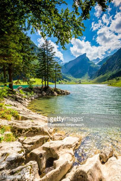 seealpsee in summer season. canton of appenzell, switzerland. - switzerland stock pictures, royalty-free photos & images