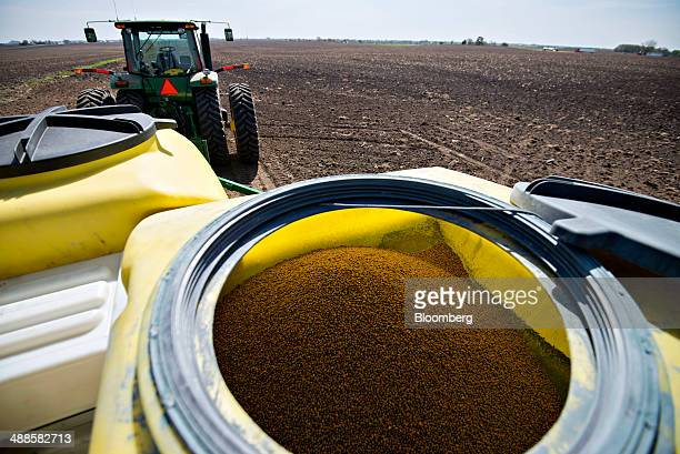 Seed corn fills a bulk storage bin on a Deere Co John Deere 24row planter during planting in Malden Illinois US on Tuesday May 6 2014 This year's...