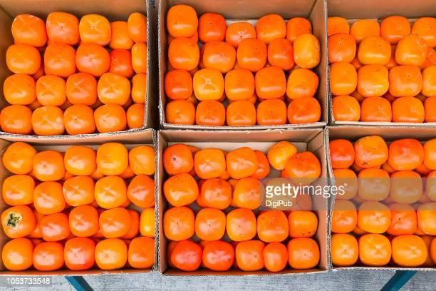 seedless persimmon fruits produced in wakayama prefecture of japan - präfektur wakayama stock-fotos und bilder