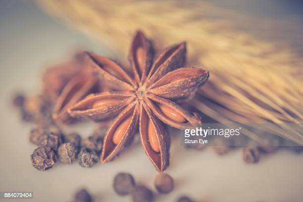 Seeds of star anise, pepper and a ear of wheat in still life composition.