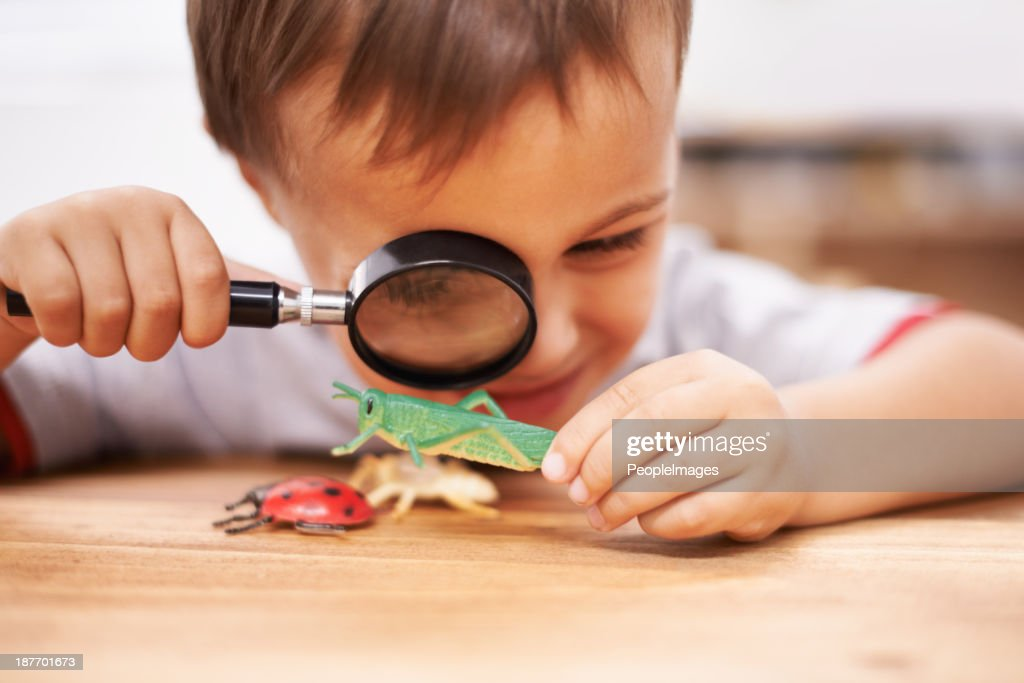 Seeing what they look like up close : Stock Photo