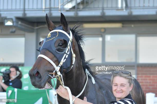 Seeking Alpha after winning the Zaparas Lawyers FM Maiden Plate at Cranbourne Racecourse on December 16 2017 in Cranbourne Australia