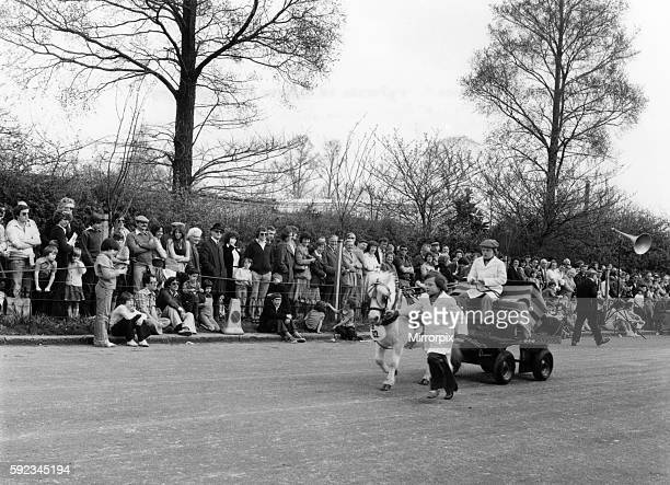 Seen here in Shetland pony Queenie entered by L. Moseley, Abridge, Essex. 1st April 1979