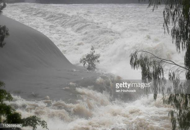 Seen is a lone tree in raging floodwaters of the Ross River on February 01 2019 in Townsville Australia Queensland Premier Annastacia Palaszczuk has...