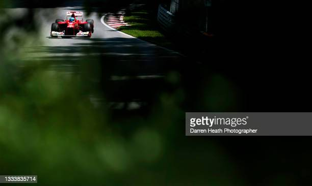 Seen through track lining trees, Spanish Scuderia Ferrari Formula One team racing driver Fernando Alonso driving his F2012 racing car at speed during...