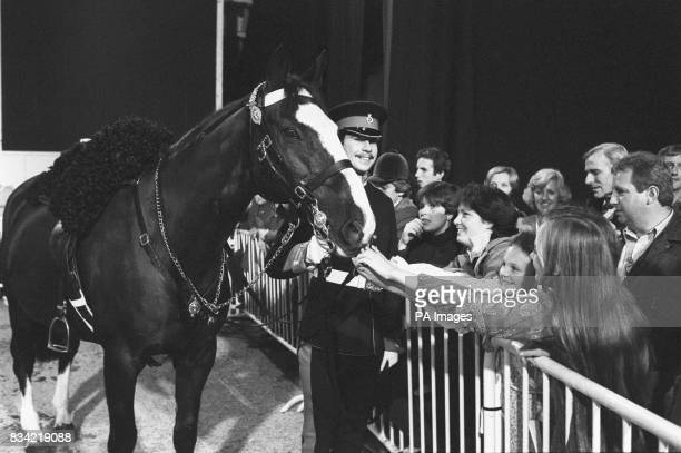 Sefton the Household Cavalry horse badly injured in the IRA bombing incident in Hyde Park meets admirers with his rider Trooper Michael Pedersen at...