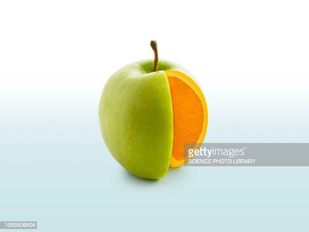 segment cut from apple showing orange inside - out of context stock pictures, royalty-free photos & images
