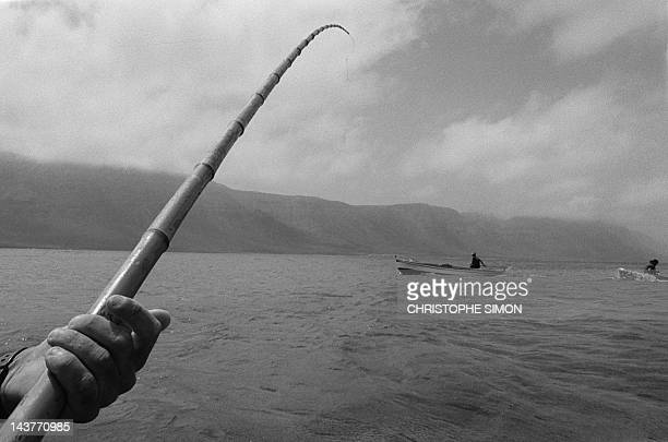 Segundo a traditional fisherman fishes 07 June 2001 with the aid of a bamboo rod in the sea near Graciosa Island a protected natural reserve where...