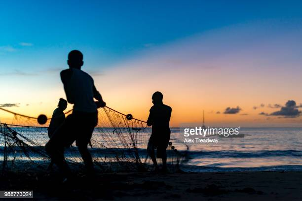 seine net fishermen haul in a catch of fish in castara bay on the caribbean island of tobago, trinidad and tobago, west indies, caribbean, central america - tobago stock pictures, royalty-free photos & images