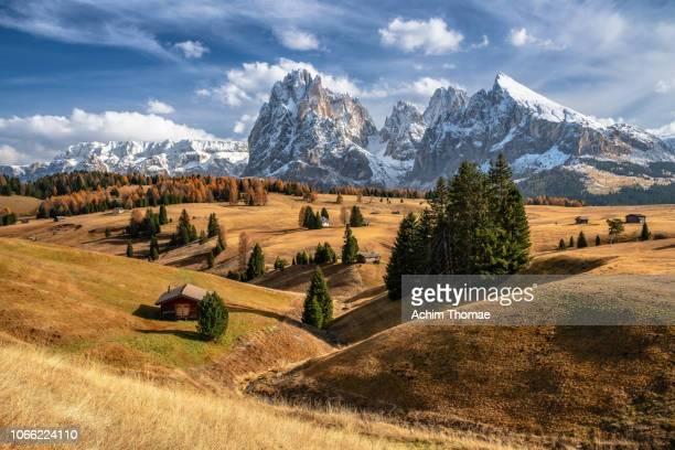 Seiser Alm, Dolomite Alps, Italy, Europe