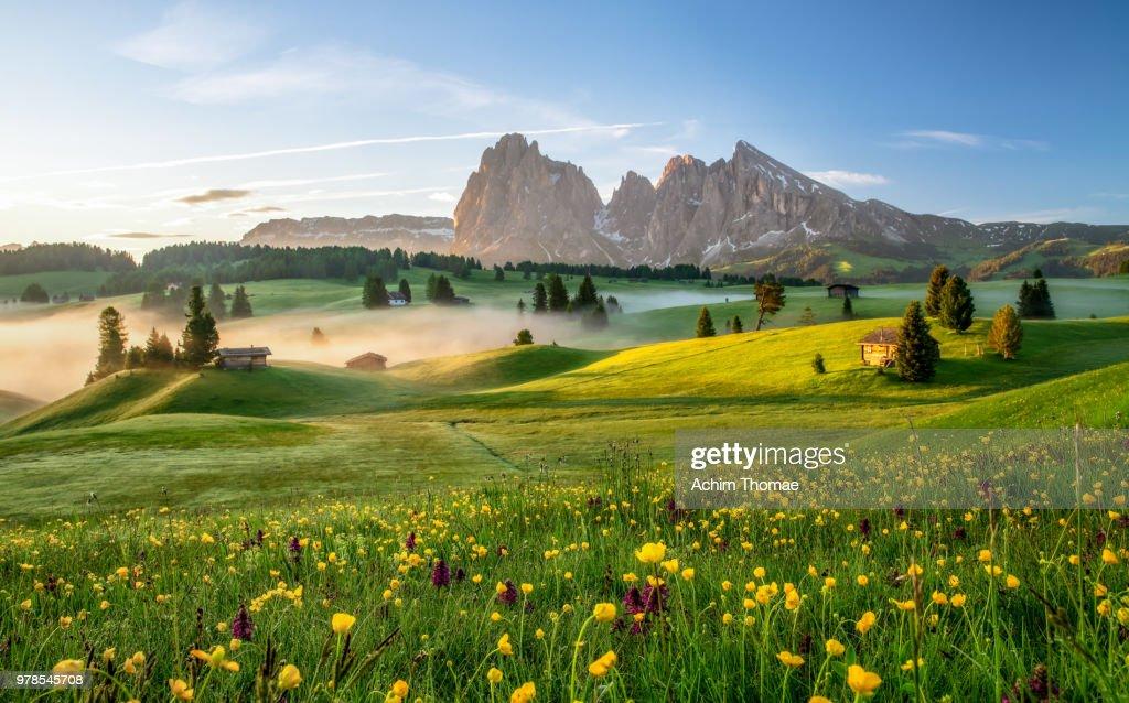 Seiser Alm, Dolomite Alps, Italy, Europe : Foto stock