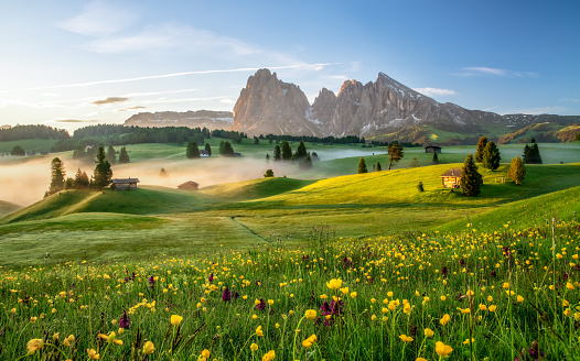 Seiser Alm, Dolomite Alps, Italy, Europe - gettyimageskorea